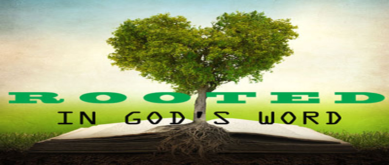 Rooted in Gods Word